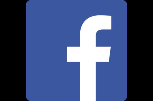 ícone facebook