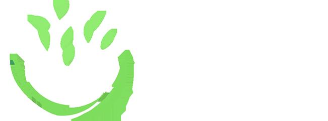 2ª Conferência Internacional de Inovação em Saúde